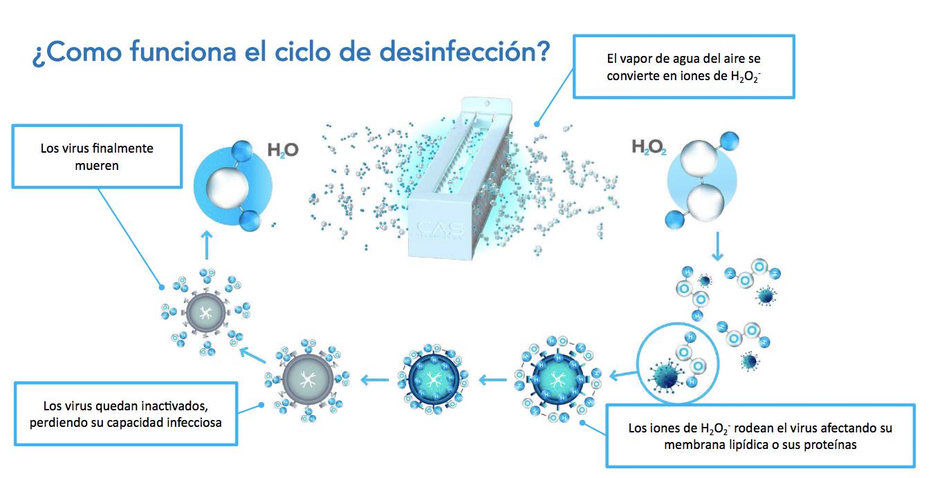 ciclo-desinfeccion